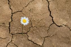 Por que existe seca no Nordeste?